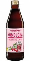 Neu bei Völkel: Kombucha-Getränke