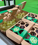 Weintrauben in Karton verpackt