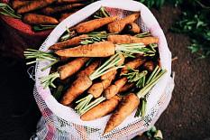 Eco-Schemes dürfen Öko-Bauern nicht benachteiligen
