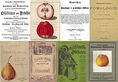 Sammlung alter Obstsorten