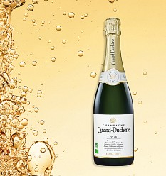 Neu: Bio-zertifizierter Champagner bei Kaufland
