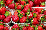 Bioaktive Verpackung hält Erdbeeren frisch
