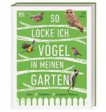 So locke ich Vögel in meinen Garten - Futter, Nistplätze, geeignete Pflanzen