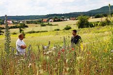 Alb-Gold fördert Biodiversität