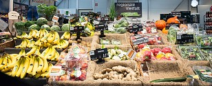 Neuer Markt, größeres (Bio-)Angebot