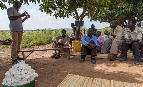 Bessere Lebensbedingungen für Ugandas Bio-Bauern