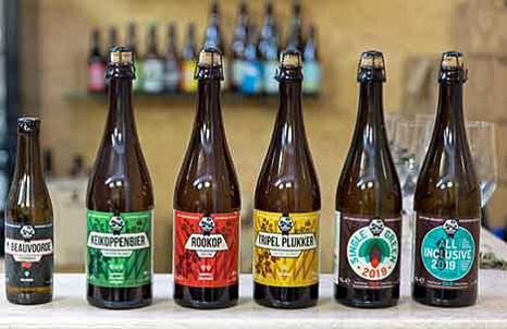 Bio-Bier aus eigenem Hopfen