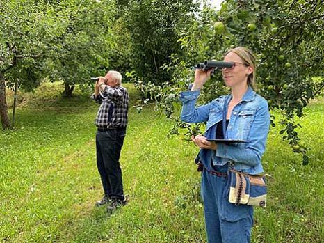 Streuobstwiesen mit mehr Bio-Äpfeln