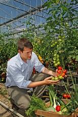 Tomaten- und Kürbiserzeugnisse - Gutes aus roten und gelben Beeren