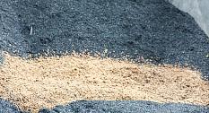 Bodenverbesserung Palaterra – Erde mit Geschichte und Zukunft