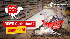 Kampagnen nehmen Lebensmittelhandel aufs Korn