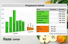 Hoher Polyphenolgehalt bei alten Apfelsorten